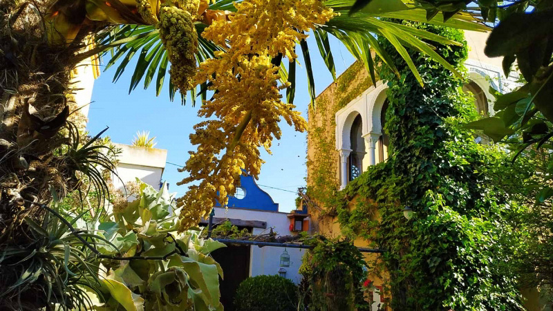 Primavera - Jardin Botanico La Almunya del Sur-11
