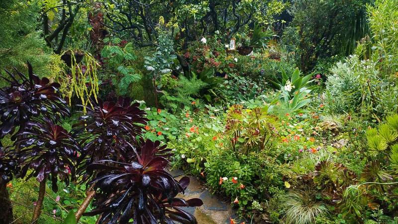 Primavera - Jardin Botanico La Almunya del Sur-16
