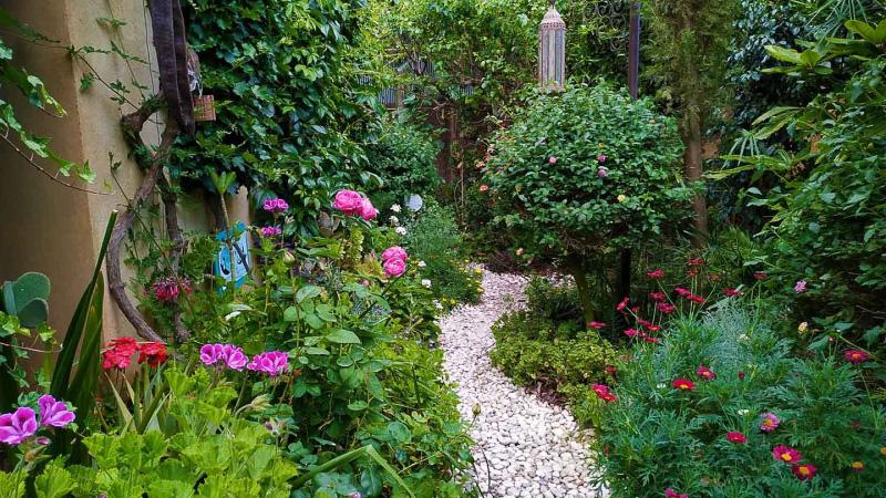 Primavera - Jardin Botanico La Almunya del Sur-19