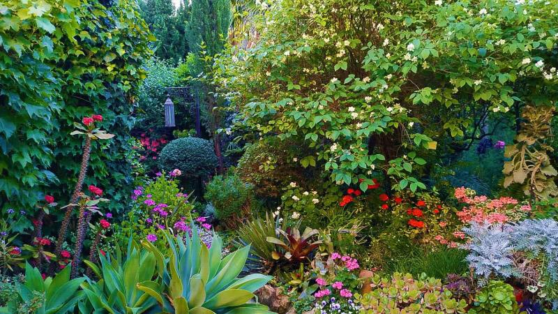 Primavera - Jardin Botanico La Almunya del Sur-35