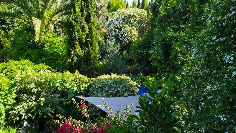Primavera - Jardin Botanico La Almunya del Sur-49