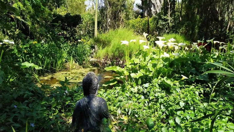 Primavera - Jardin Botanico La Almunya del Sur-9