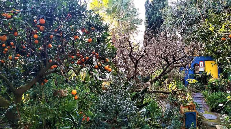 invierno-jardin-botanico-la-almunya-del-sur-41