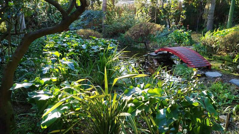 invierno-jardin-botanico-la-almunya-del-sur-42