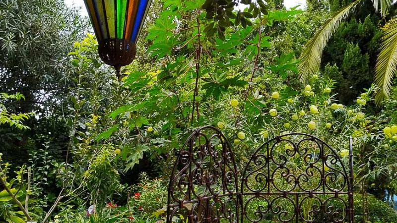 otoño-jardin-botanico-la-almunya-del-sur-37