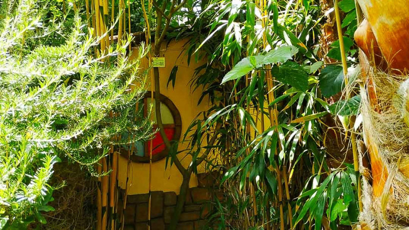 verano-jardin-botanico-la-almunya-del-sur-33