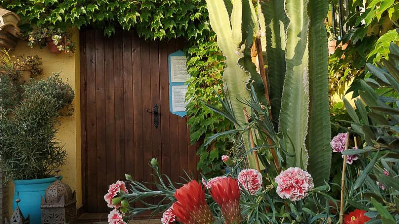 verano-jardin-botanico-la-almunya-del-sur-9